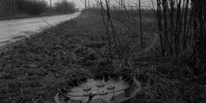 hubcaps3